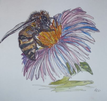 Bee Study, Watercolor and Ink, 2010